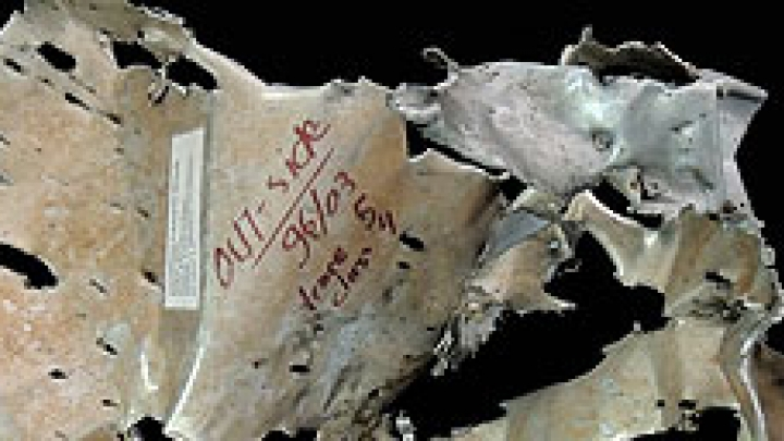 Online izložba: Pogled kroz odškrinuta vrata arhiva